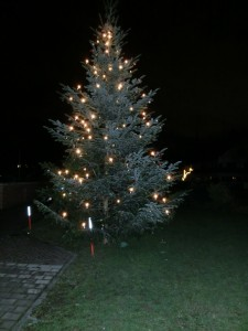 Christbaum1 (1)