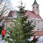 Salmdorfer Christbaum